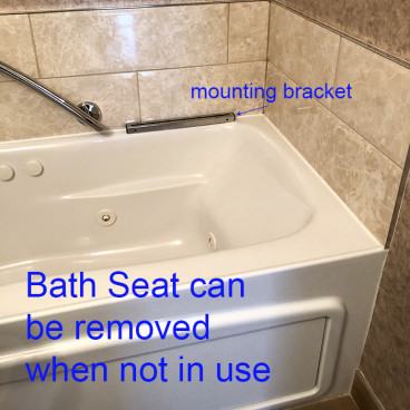 removable bath seat
